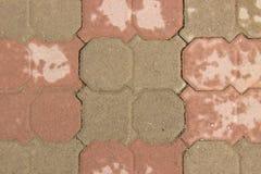 Adoquines mojados del color marrón en un rastro después de la lluvia Fotos de archivo
