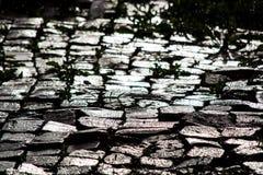 Adoquines mojados en el sol Foto de archivo