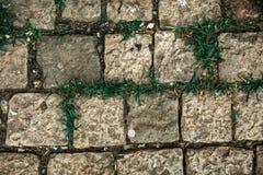 Adoquines viejos modelo, textura del guijarro, cierre encima de la visión, fondo de piedra Fotografía de archivo libre de regalías