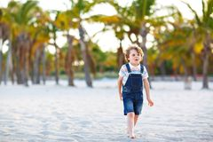 Adorable active little kid boy having fun on Miami beach, Key Biscayne. Happy cute child relaxing, playing with sand and. Enjoying sunny warm day near palms and stock images