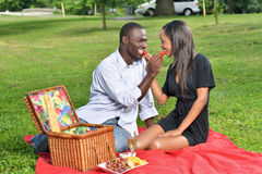 Adorable African American couple on picnic. Cute African-American couple having a picnic in a park - women in black dress men in button up shirt - feeding each Royalty Free Stock Images