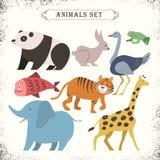 Adorable animals set Stock Photos