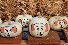 Adorable arrangement of pumpkins painted with silly faces Royalty Free Stock Photo