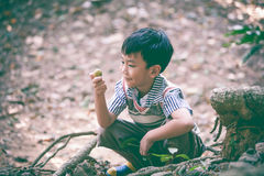 Adorable asian child playing outdoors at the summer day on vacat Stock Photos