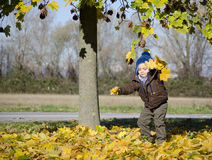 Adorable autumn baby playing Stock Images