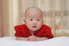 An adorable baby Royalty Free Stock Photo