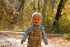 Adorable baby in autumn park Stock Photo