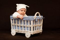 Adorable, Baby, Basket, Beautiful Royalty Free Stock Image