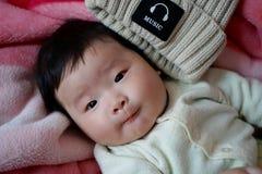 Adorable, Baby, Beanie stock photos