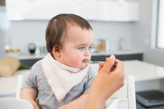 Adorable baby being fed by mother Stock Photos