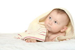 Adorable baby boy  on blanket. On a white background Royalty Free Stock Photography