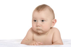 Adorable baby boy  on blanket. On a white background Royalty Free Stock Photo