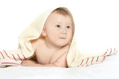 Adorable baby boy  on blanket. On a white background Royalty Free Stock Image