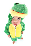 Adorable baby boy dressed as a frog Royalty Free Stock Photo