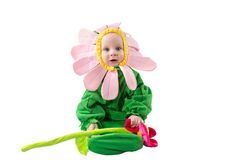 Adorable baby boy, dressed in flower costume on white background. stock images
