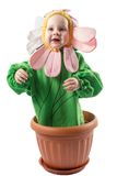 Adorable baby boy, dressed in flower costume on white background Royalty Free Stock Photos