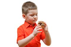 Adorable baby boy eat donut with chocolate. Isolate Stock Image