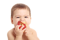 Adorable baby boy eating apple - isolated Royalty Free Stock Photography