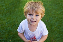 Adorable baby boy on green grass with glass Stock Images