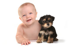 Adorable Baby Boy With His Pet Teacup Yorkie Puppy. Cute Baby Boy With His Pet Teacup Yorkie Puppy royalty free stock photos