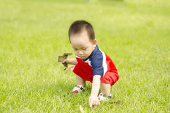 Adorable baby boy pick leaf up Royalty Free Stock Photos