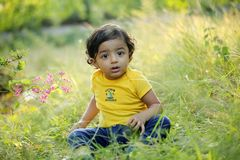 Adorable baby boy sitting in park royalty free stock images