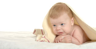 Adorable baby boy  under  blanket Royalty Free Stock Photo