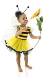 Adorable Baby Bumble Bee. An adorable African American two year old smiling at a large sunflower while she's dressed as a yellow and black bumble bee.  On a Stock Images