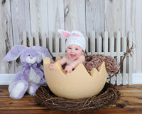 Adorable baby in bunny hat sitting in giant egg Royalty Free Stock Photos