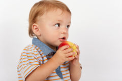 Adorable baby eating apple. An Adorable baby eating apple Royalty Free Stock Image