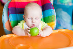 Adorable baby eating apple in high chair Stock Image