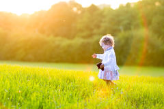 Adorable baby girl in autumn field at sunset Stock Image