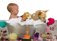 Adorable baby girl bathing with her dog Royalty Free Stock Photo