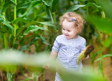 Adorable baby girl with blond curly hair in corn field Royalty Free Stock Image