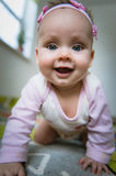 Adorable baby girl crawls on all fours floor at Stock Photos