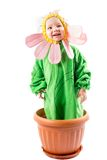 Adorable baby girl dressed in flower costume Royalty Free Stock Photography