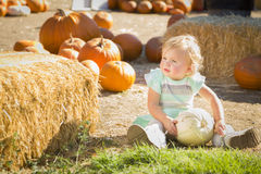Adorable Baby Girl Holding a Pumpkin at the Pumpkin Patch Stock Photography