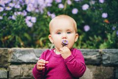 Adorable baby girl playing outside. Outdoor portrait of adorable 9-12 month old baby girl playing with purple flowers Stock Photo