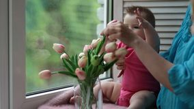 Adorable baby girl playing with tulip flower stock video footage