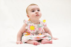 Adorable baby girl sitting on the floor,. Studio shot, isolated on white royalty free stock photo