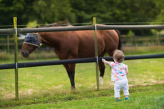 Adorable baby girl watching horse on farm at sunset Stock Photo