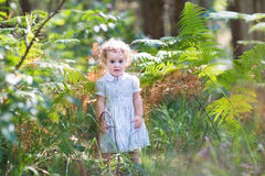 Adorable baby girl in white dress playing in sunny park Stock Image