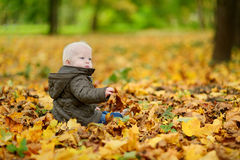 Adorable baby having fun on beautiful autumn day Royalty Free Stock Image
