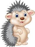 Adorable baby hedgehog sitting  on white background Royalty Free Stock Image