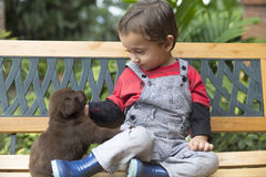 Adorable Baby And His Dog Royalty Free Stock Photos