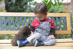 Adorable Baby And His Dog Royalty Free Stock Image