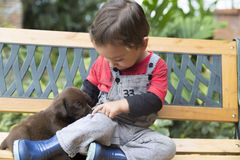 Adorable Baby And His Dog Stock Image
