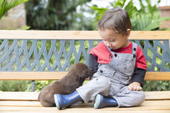 Adorable Baby And His Dog Royalty Free Stock Images