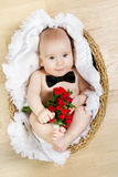 Adorable baby holding flowers, butterfly tie Royalty Free Stock Photo