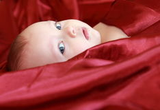 Adorable baby looking out of covered Royalty Free Stock Photo